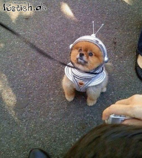Süßer Astronaut