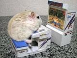 Konsole für Hamster