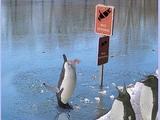 Nicht Schwimmen!