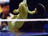 Tischtennisechse