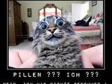 Nimmt die Katze Pillen?