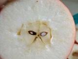 Wütender Apfel
