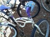 Fahrradcontroller