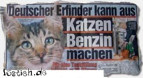 Katzenbenzin