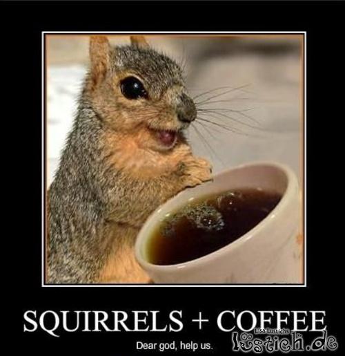 Eichhörnchen trinkt Kaffee