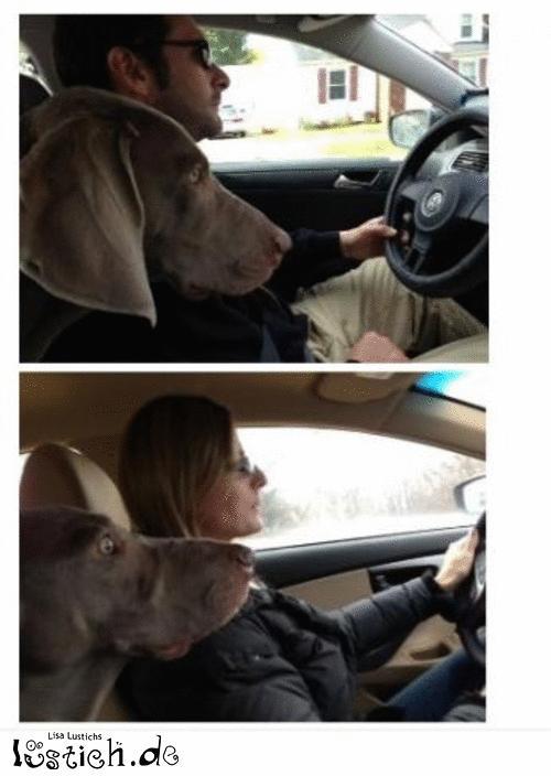 Wer kann besser fahren?
