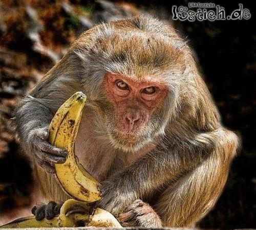 Du willst meine Banane?