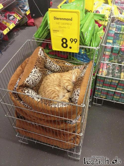 Neulich im Supermarkt