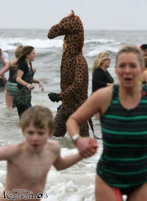 Giraffe am Strand