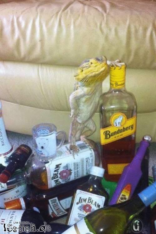 Alkoholechse