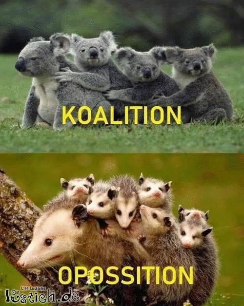 Koalition & Opposition