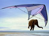 Leichter Elefant