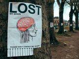 Hirn verloren