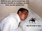 Spinne erschlagen
