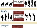 Evolution der Frau