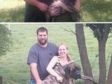 Einen Welpen adoptieren