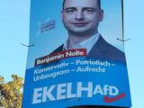 EkelhAfD